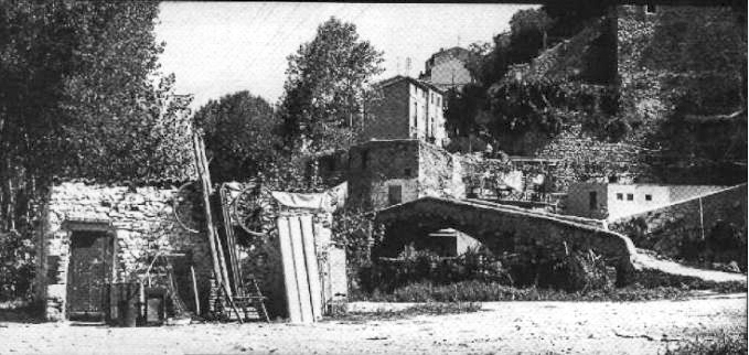 gabriel-carrasco-buidaoli-2