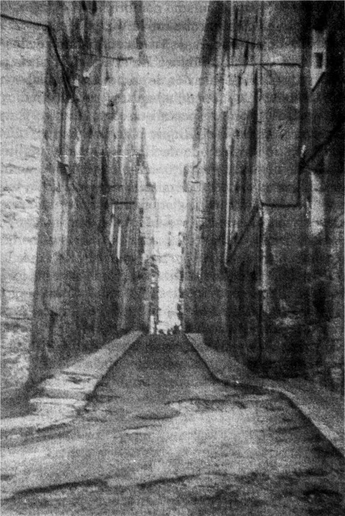 calle-el-pilo